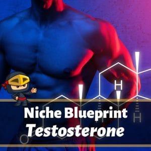 Niche Blueprint: Testosterone Affiliate